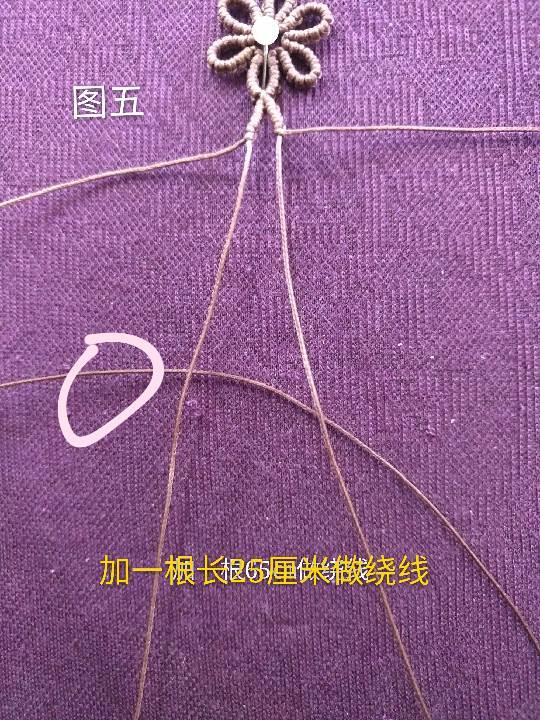 中国结论坛 小雏菊 小雏菊,今年为什么流行小雏菊,小雏菊寓意和象征,小雏菊为什么火了 图文教程区 225842yzigr12utjiqrozj