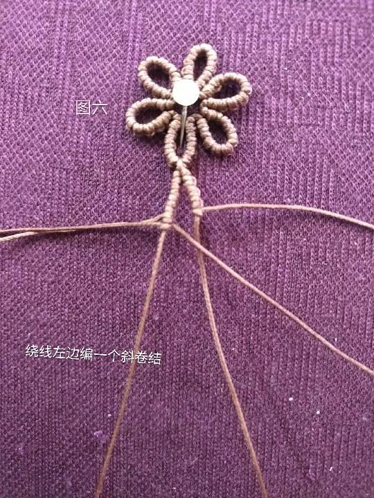 中国结论坛 小雏菊 小雏菊,今年为什么流行小雏菊,小雏菊寓意和象征,小雏菊为什么火了 图文教程区 225842znu2x8yfzp8wsuea