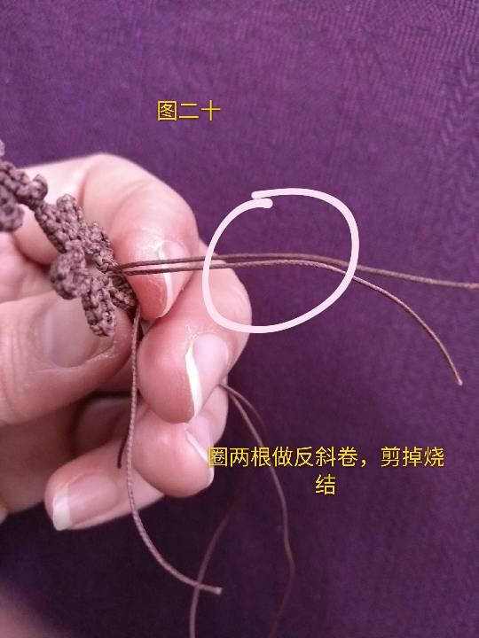 中国结论坛   图文教程区 230127f7774zcap7cnpno7