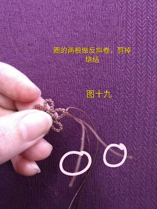 中国结论坛   图文教程区 230127lt4r55r00n5z0mr6