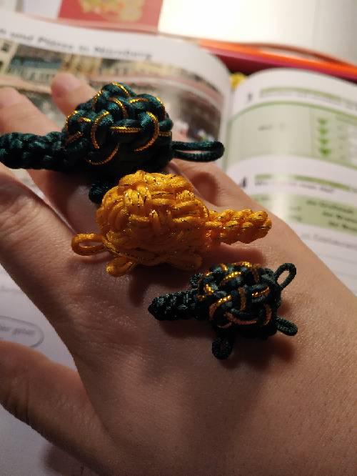 中国结论坛 小龟一家 我家的小乌龟优秀作文,我家的小乌龟作文开头,我家的小乌龟作文大全,我家养了一只小乌龟,我家有一只小乌龟 作品展示 030002w415m6tlzttrcrd4