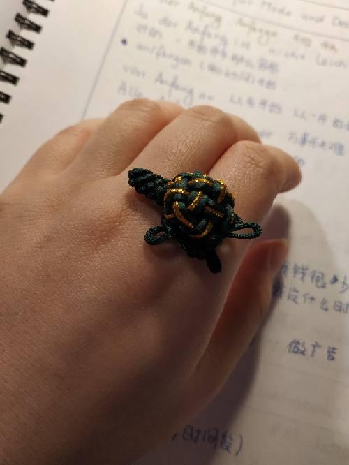 中国结论坛 小龟一家 我家的小乌龟优秀作文,我家的小乌龟作文开头,我家的小乌龟作文大全,我家养了一只小乌龟,我家有一只小乌龟 作品展示 030003lppjz2xn4e24nx2r