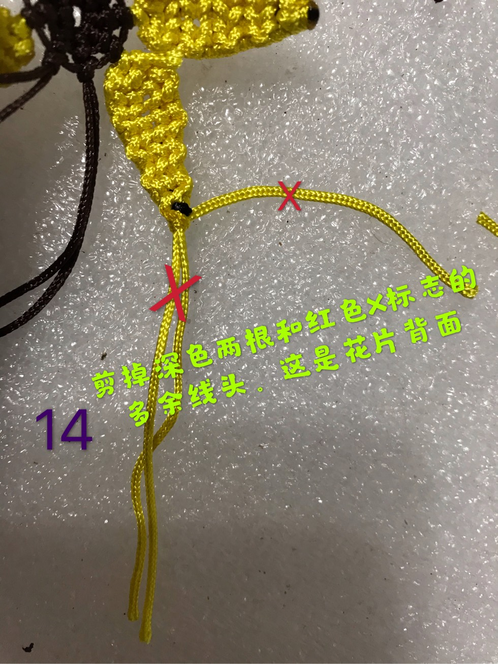 中国结论坛 向阳花  图文教程区 095249ovp0z1dpq2p192qp