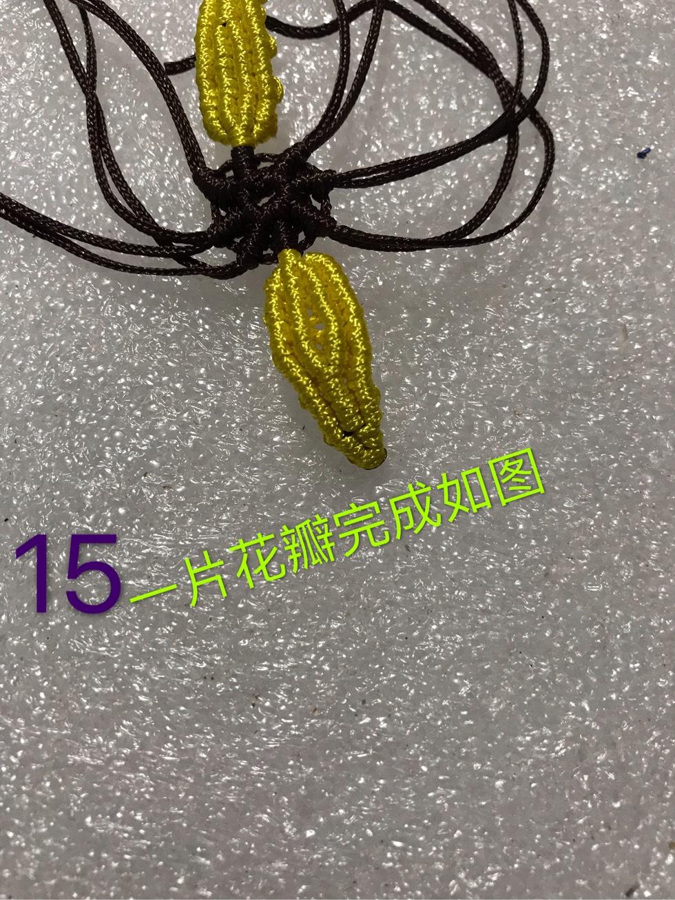中国结论坛 向阳花  图文教程区 095253sftf6vcccu6ze3if