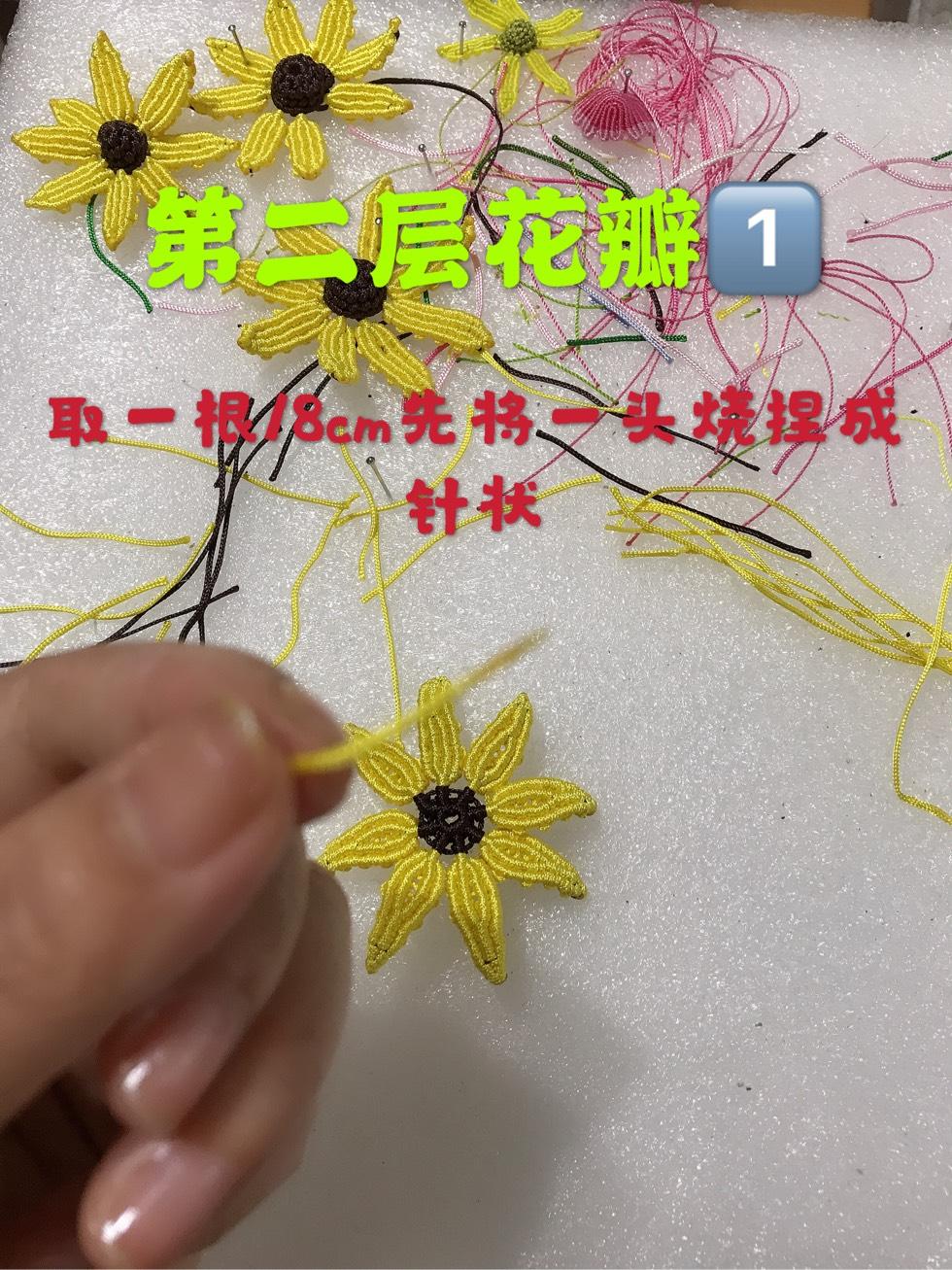 中国结论坛 向阳花  图文教程区 095300a79nhckthdh6rnn9