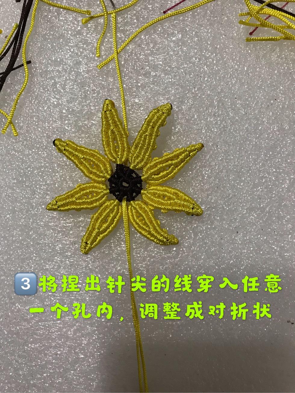 中国结论坛 向阳花  图文教程区 095304s4s004auz303mkub
