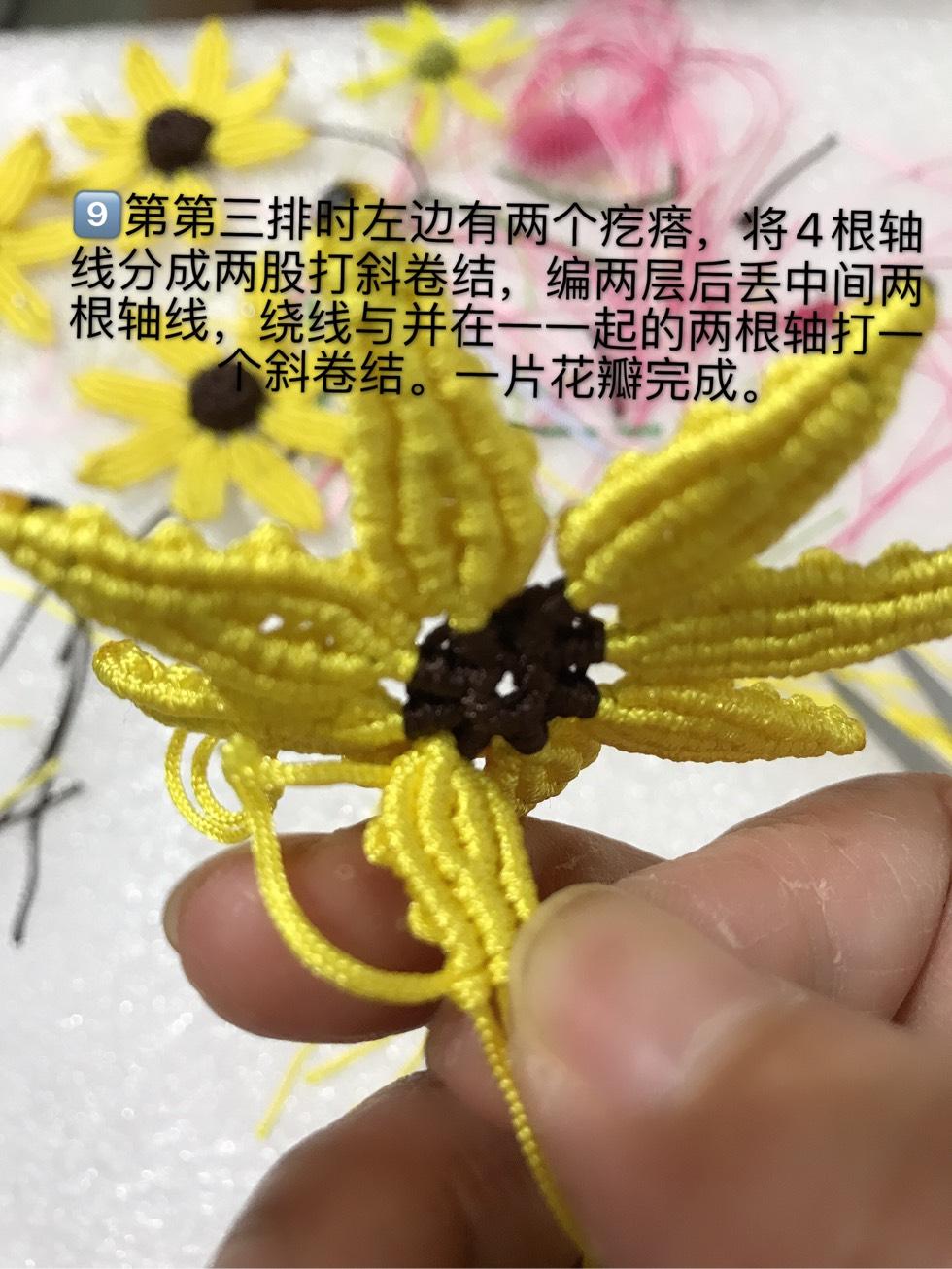 中国结论坛 向阳花  图文教程区 095313z336p7b3j6qx363q