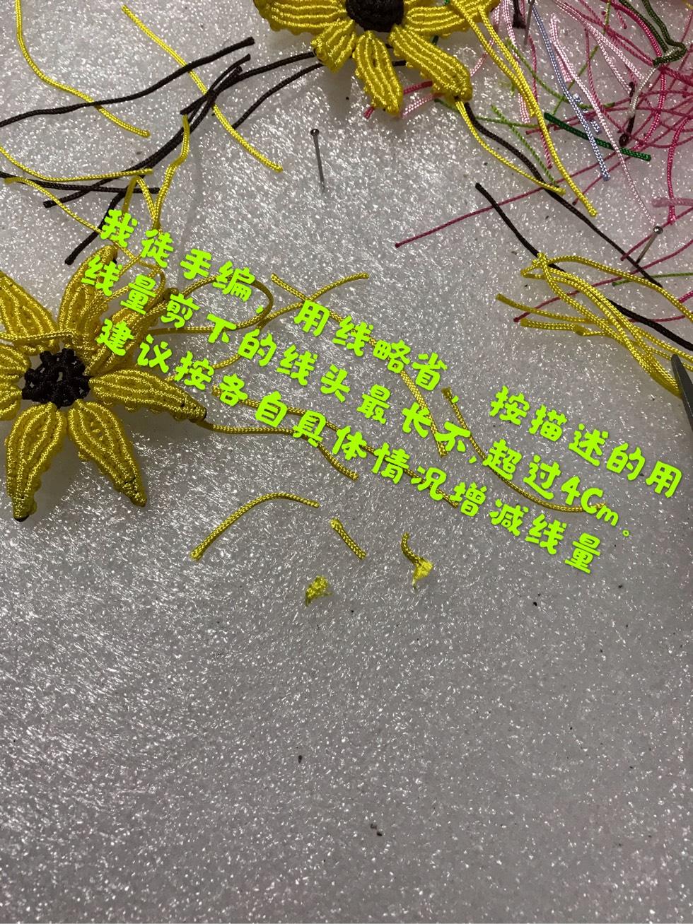中国结论坛 向阳花  图文教程区 095316r8zim5pllpp5cj5p