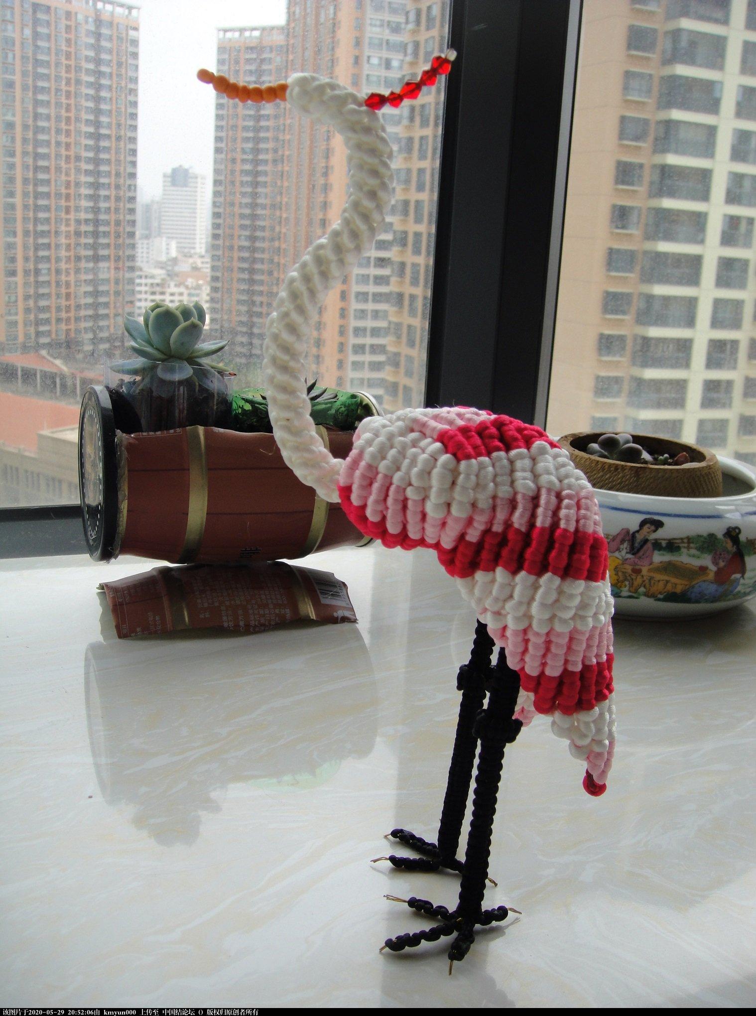中国结论坛 仙鹤 仙鹤,仙鹤的寓意和象征,仙鹤图片,衣服为什么不能带仙鹤,仙鹤美图 作品展示 204749klwh8whakg873qzq
