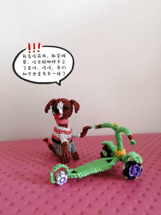 中国结论坛 狗子趣事 狗狗跟我的有趣事,与狗狗相处趣事,小狗有哪些趣事,有关狗的趣事 立体绳结教程与交流区 155925dnqmds30nkzcmnkn