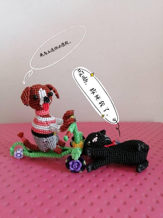中国结论坛 狗子趣事 狗狗跟我的有趣事,与狗狗相处趣事,小狗有哪些趣事,有关狗的趣事 立体绳结教程与交流区 155927k9zu9u5yrccgcuul
