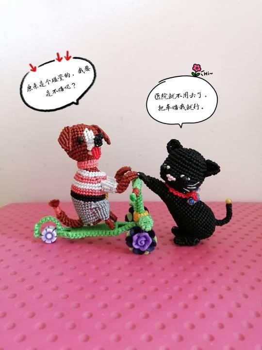 中国结论坛 狗子趣事 狗狗跟我的有趣事,与狗狗相处趣事,小狗有哪些趣事,有关狗的趣事 立体绳结教程与交流区 155927nsy5z060mapmdp6x