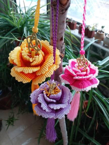 中国结论坛 牡丹花 世界上第一名最美的花,牡丹花为什么不能进家,最漂亮的牡丹花图片,牡丹花的寓意和象征 作品展示 164415livjwxttxz2kwt3i