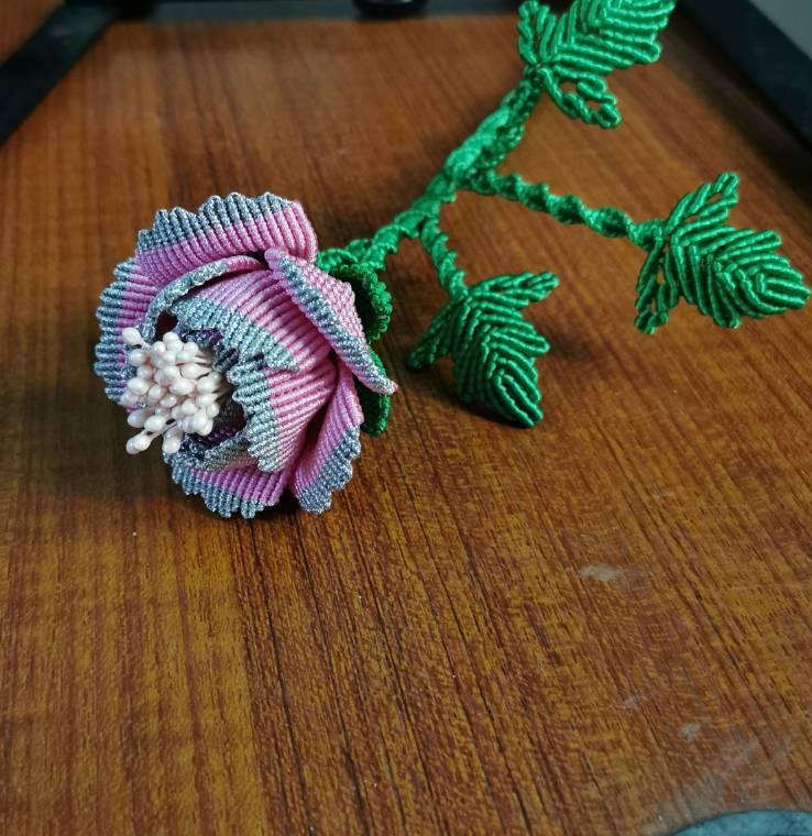 中国结论坛 牡丹花 世界上第一名最美的花,牡丹花为什么不能进家,最漂亮的牡丹花图片,牡丹花的寓意和象征 作品展示 191504q82bzzsllplda92v