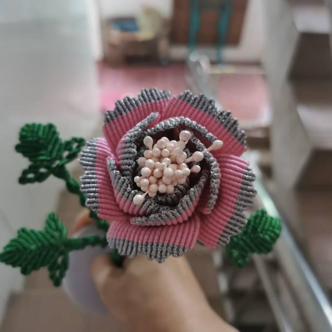 中国结论坛 牡丹花 世界上第一名最美的花,牡丹花为什么不能进家,最漂亮的牡丹花图片,牡丹花的寓意和象征 作品展示 191511ljz11d0d4lj901du