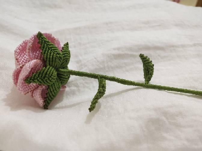 中国结论坛 玫瑰 玫瑰,玫瑰 小鸟,玫瑰图片,玫瑰读音,玫瑰歌曲 作品展示 221504txx3orhxo4xo30rz
