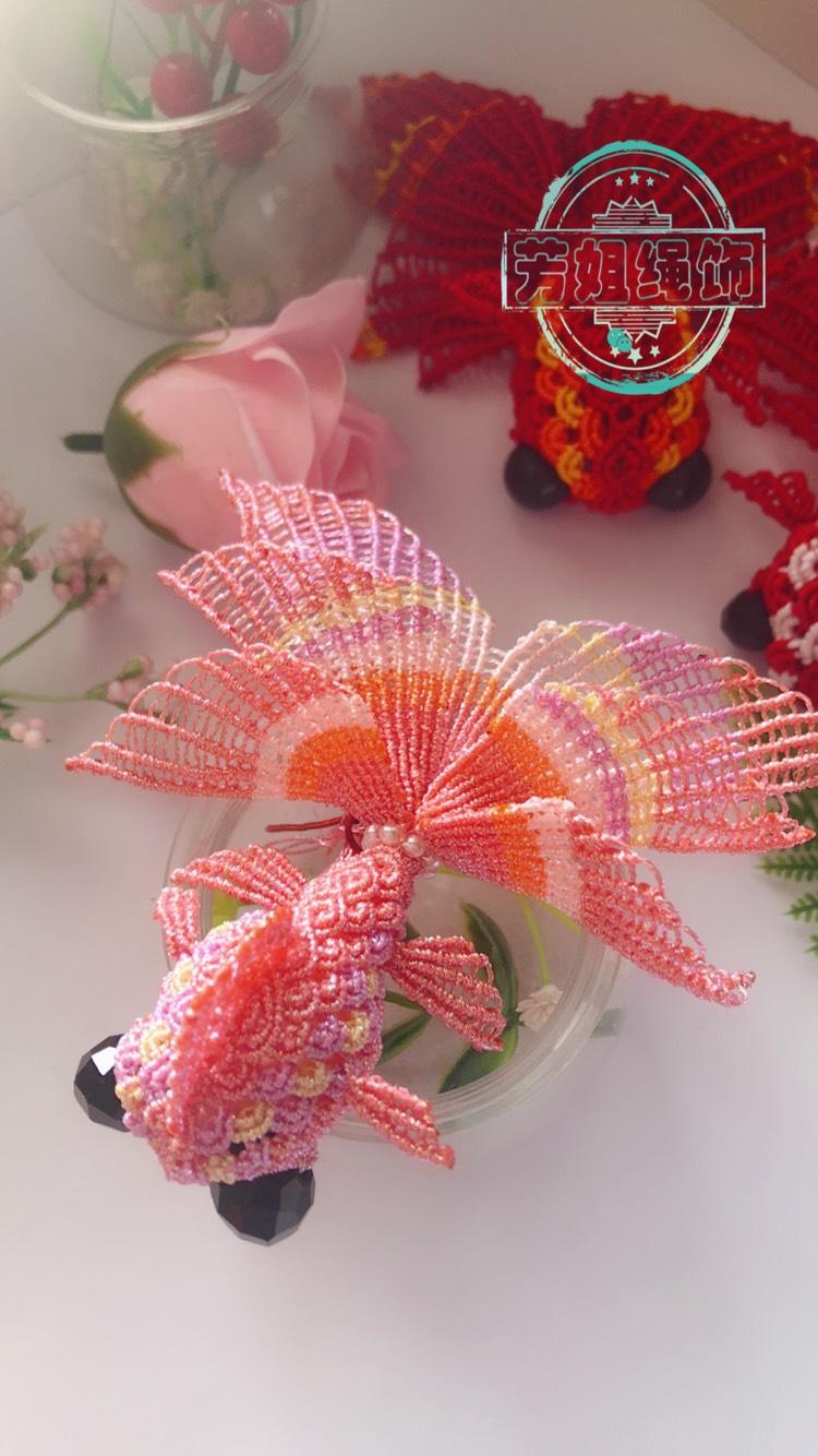 中国结论坛 原创蕾丝纹小金鱼 上海最大的金鱼市场,上海最近展会时间 作品展示 222821o8f04uvk4ppz4p01