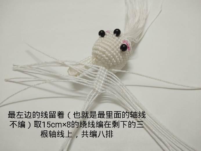 中国结论坛 南瓜兔兔 方兔兔,南瓜小米粥,南瓜,炒南瓜 图文教程区 001502bir6e2cvr28kwz1c