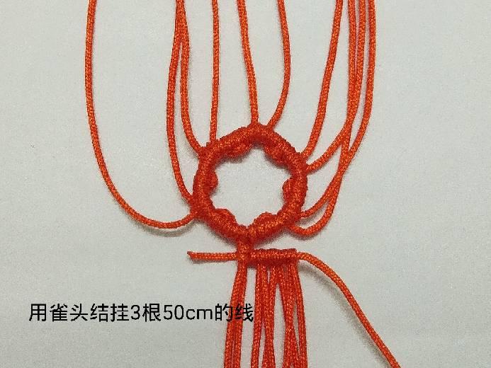 中国结论坛 南瓜兔兔 方兔兔,南瓜小米粥,南瓜,炒南瓜 图文教程区 001508x5vnna5u5vz9vus5