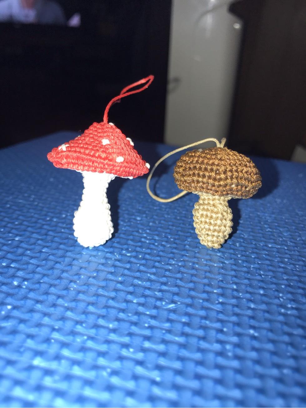 中国结论坛 香菇与蘑菇 褐菇和香菇区别,蘑菇和菌子有什么区别,香菇和蘑菇哪个营养高,板菇和香菇的区别,原菇是不是香菇 作品展示 205801yvnqqphlcxwqphta