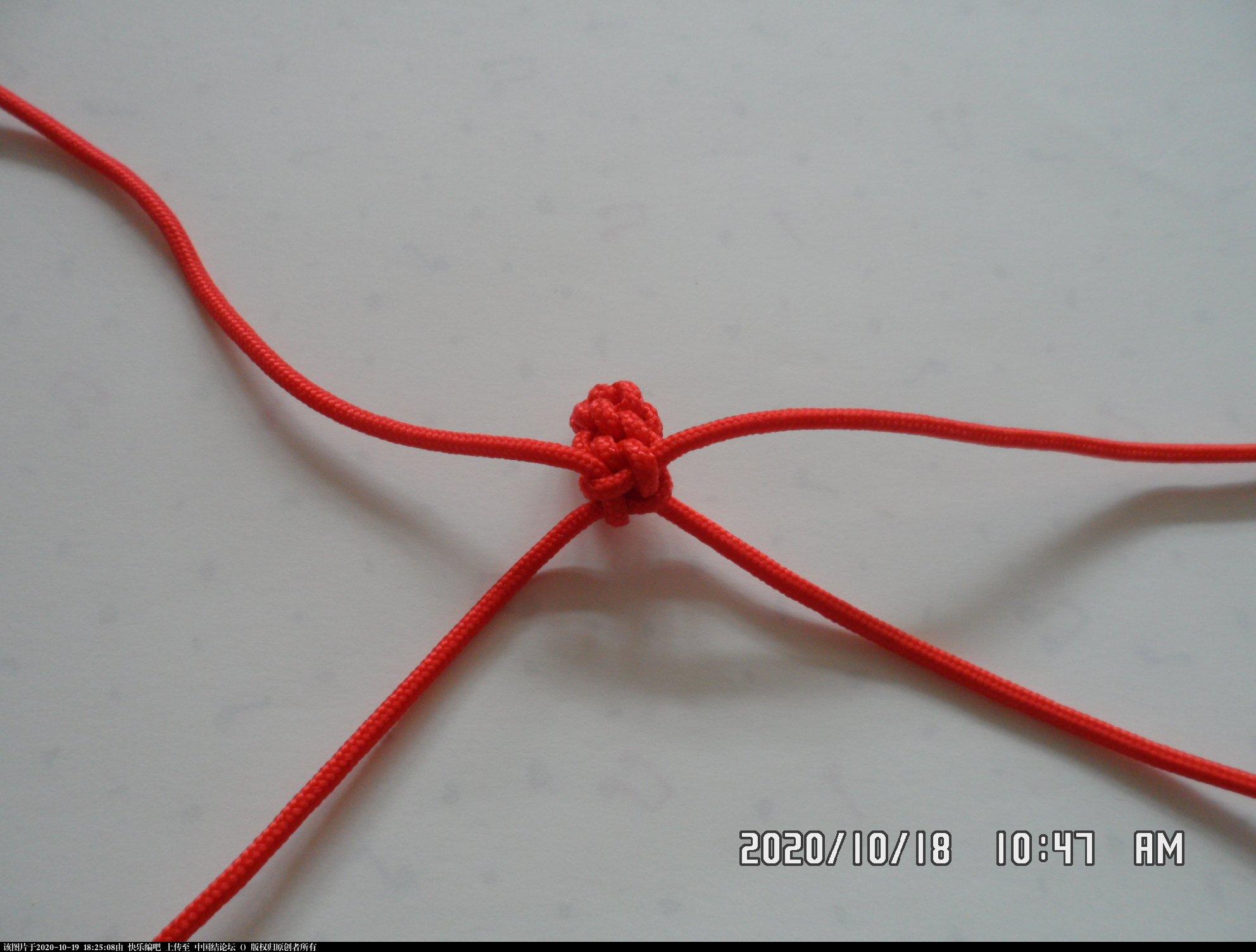 中国结论坛 一款简易版生肖狗的编法 简单生肖狗剪纸教程,斜卷结编十二生肖 图文教程区 160412lshbszhz707jhvzb