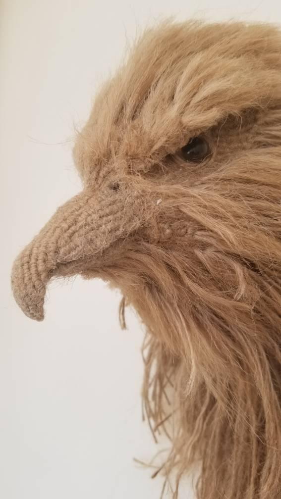 中国结论坛 苍鹰 中国允许养的鹰,中国鹰种类,金雕吃人,养一只苍鹰判几年,巨型金雕 作品展示 202803ejy9gbvwxiiixxij
