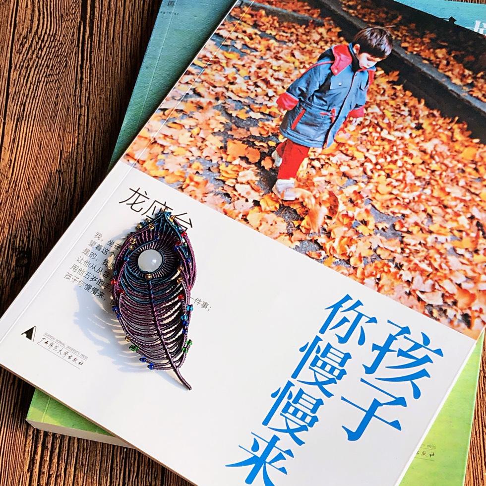 中国结论坛 【梦·翎】 镶珠 作品展示 104926wspuh6pwhq6liacu
