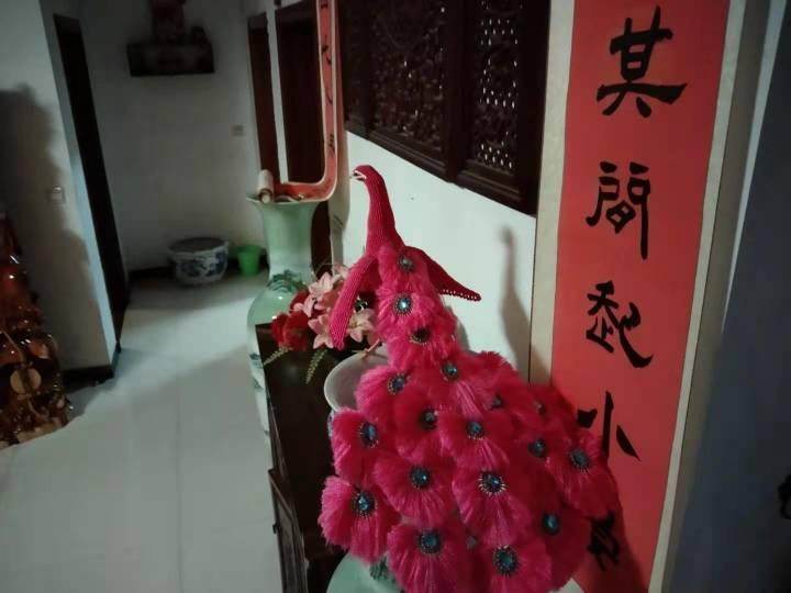 中国结论坛 粉色孔雀  丽姐的教程跟着做的 孔雀,动物 作品展示 195805ukxmbg04n6kyx0ie