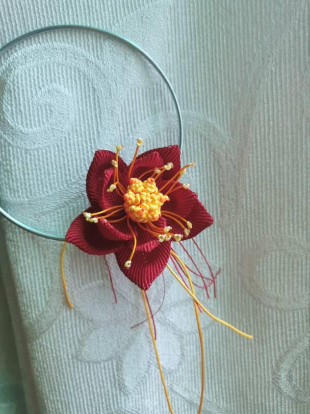 中国结论坛 红莲印象完成 花卉,斜卷结植物 作品展示 224305zow1bdg95zevw1q4