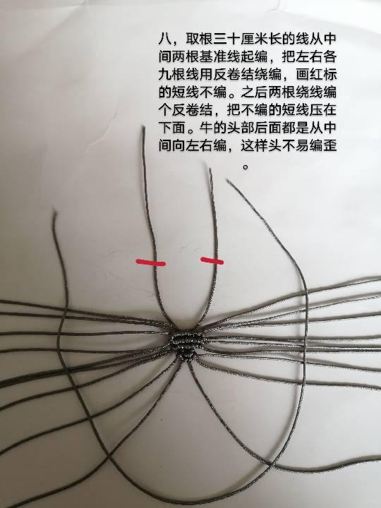 中国结论坛 牛年吉祥 牛年吉祥成语,牛年带牛字祝福语,牛年大吉的话,牛年的吉祥语学生,形容牛年的成语 图文教程区 120306jz3pmkk4mpqm2abz
