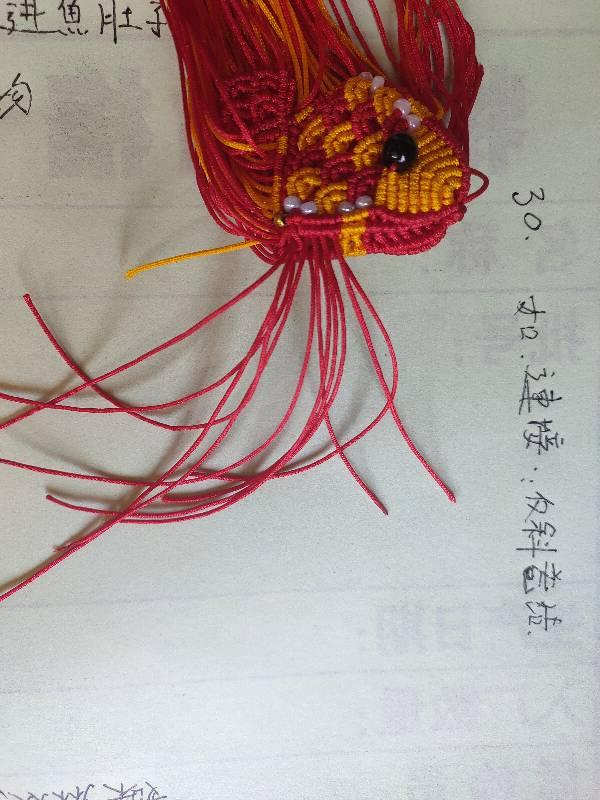 中国结论坛 小燕鱼~原创作品 小燕鱼简笔画彩色,小燕鱼参加选美的故事,美丽的小燕鱼公开课,小燕鱼的故事思维绘画,燕鱼的画法 图文教程区 134307bb4ir64hcei0ie6f