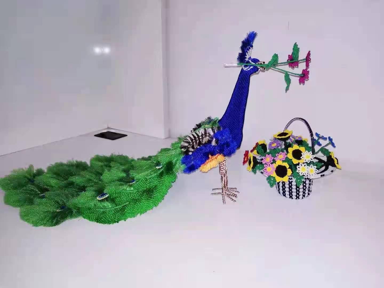 中国结论坛 花孔雀 孔雀飞羽花卉怎么养,黑化孔雀图片,孔雀翎花植物的养殖,一只孔雀多少元,红孔雀 作品展示 194206of9kzcgzoffhi7ii