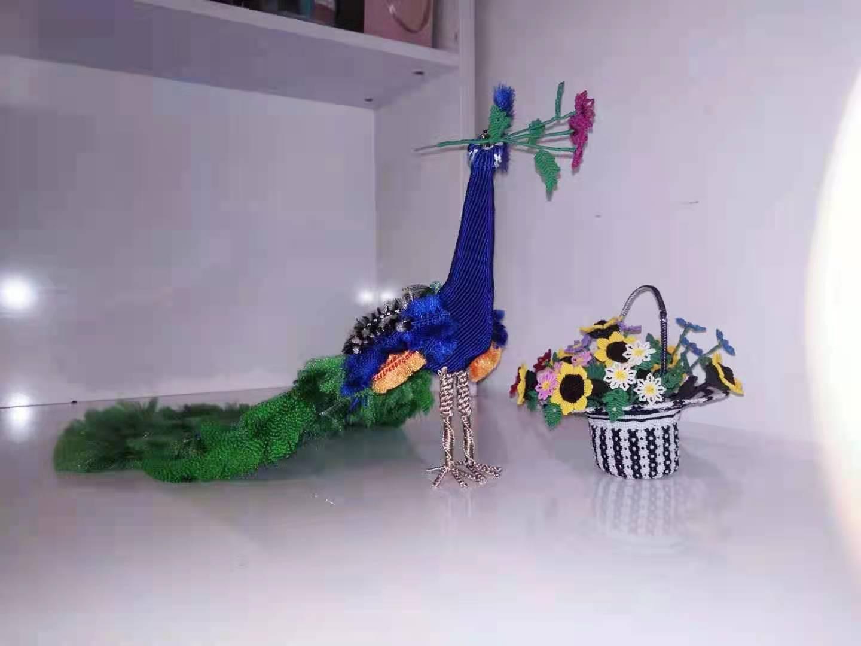 中国结论坛 花孔雀 孔雀飞羽花卉怎么养,黑化孔雀图片,孔雀翎花植物的养殖,一只孔雀多少元,红孔雀 作品展示 194212vhslb3o50b0xhx02
