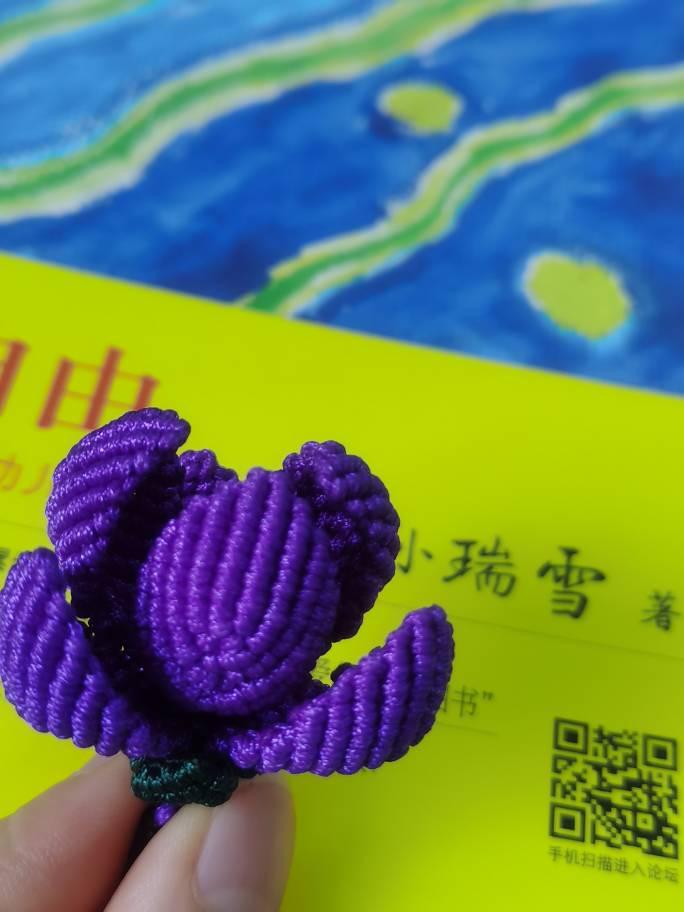 中国结论坛 新手入坑,玉兰花开 玉兰花有几种,玉兰树太高怎样修剪,玉兰花几点开花,玉兰花哪个品种最贵 作品展示 150757nsdmjsydh7l77wz1
