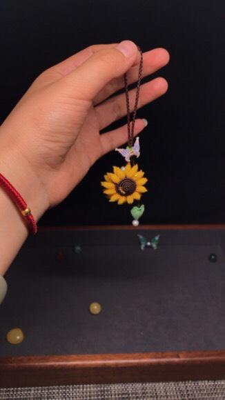 中国结论坛 向日葵香盒 观赏向日葵,放香和,向日葵花,向日葵怎么养 作品展示 092459fltl0jhd0d86jk2t