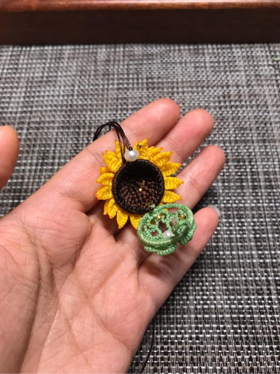 中国结论坛 向日葵香盒 观赏向日葵,放香和,向日葵花,向日葵怎么养 作品展示 092501y0hkslef7leshaha