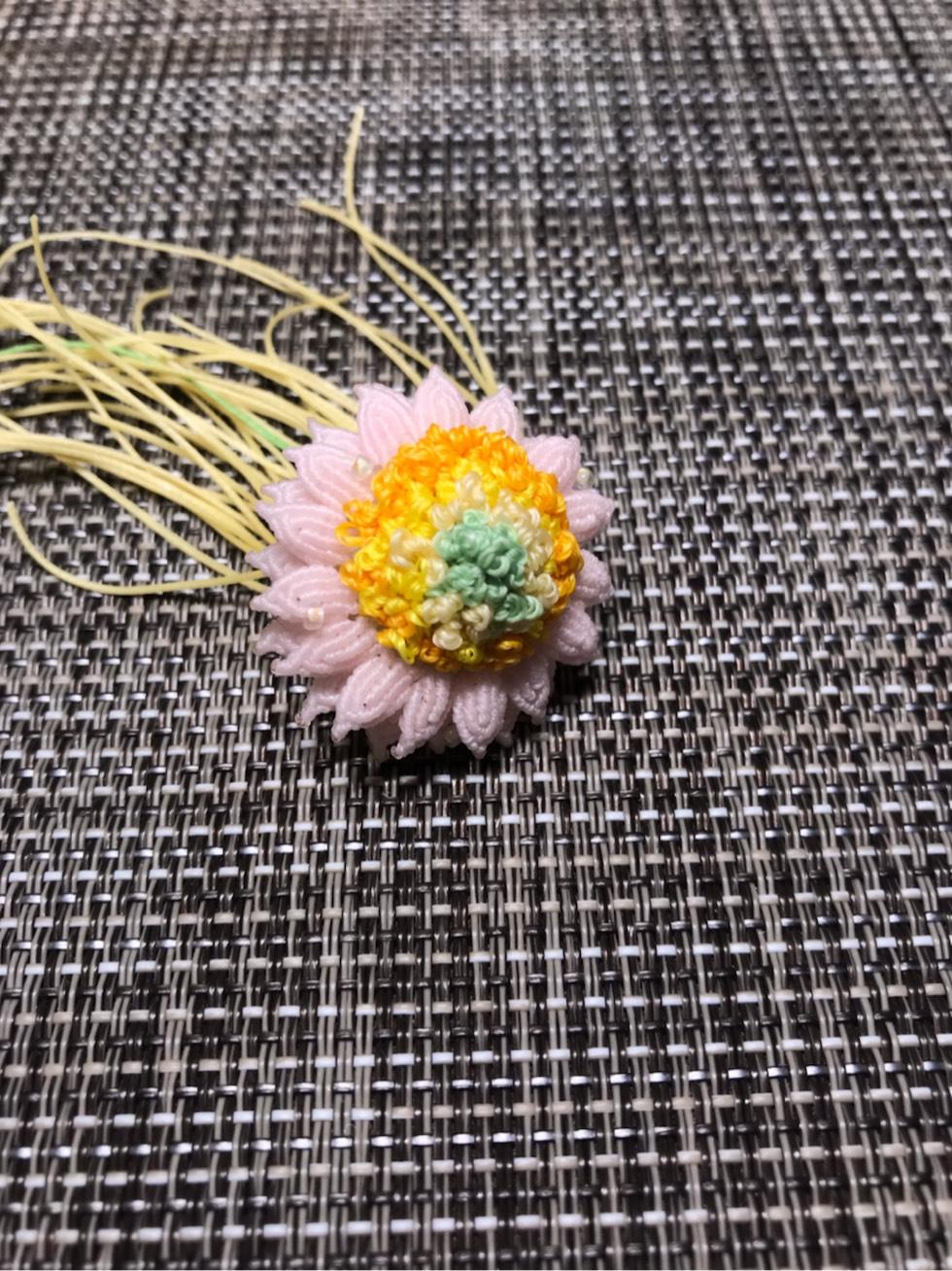 中国结论坛 奶油向日葵 向日葵奶油花做法,奶油向日葵鲜切花,向日葵裱花蛋糕,奶油向日葵别名,奶油向日葵养护 作品展示 221625svmxq18m8xqcrpiq