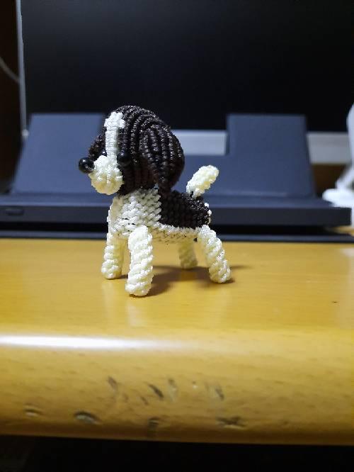 中国结论坛 小狗 卖狗狗的平台,晴天小狗,宠物狗价格一览表,小狗品种的图片,和她的价格 作品展示 140744lvds2e22e9hsgwn3