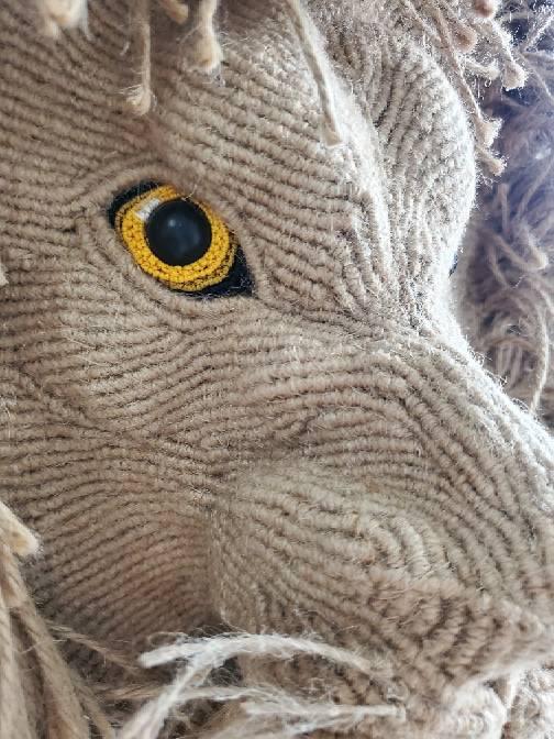 中国结论坛 狮 巨狮鬣兽,狮的拼音是,狮最早出处,显示小狮子,刚果狮的食物 作品展示 090156qaemmaregiiufai4