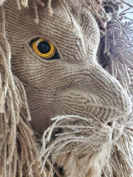 中国结论坛 狮 巨狮鬣兽,狮的拼音是,狮最早出处,显示小狮子,刚果狮的食物 作品展示 090158uyaav1aa0ur1qaas