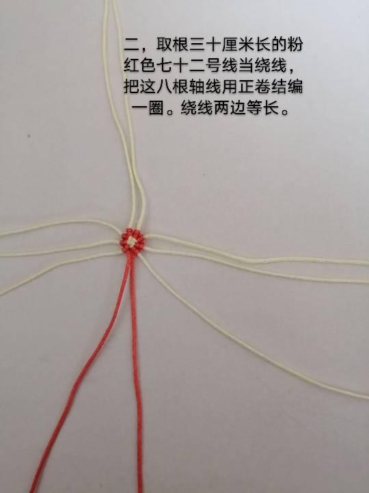 中国结论坛 兔子,小车,花缸教程 教程,兔子花怎么打,和兔子有关的花图片,兔子花刀图片,兔子花是什么花 图文教程区 142554ck0qxbz7yqxsxeyd