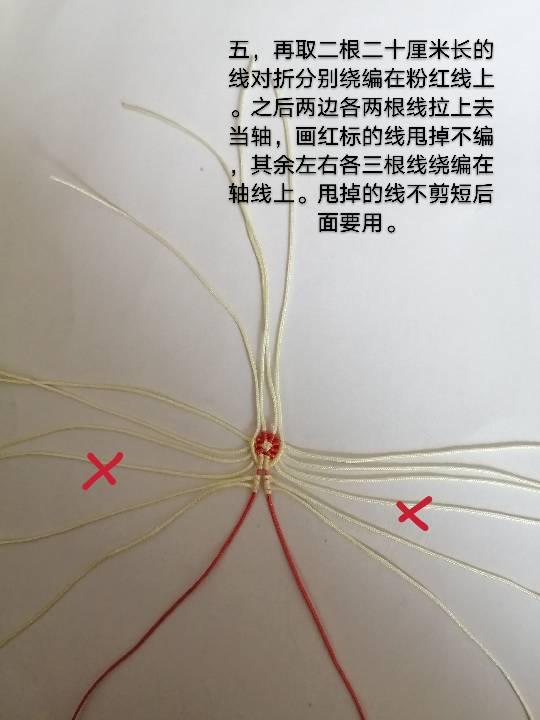中国结论坛 兔子,小车,花缸教程 教程,兔子花怎么打,和兔子有关的花图片,兔子花刀图片,兔子花是什么花 图文教程区 142555f48s1fii0dagds8d