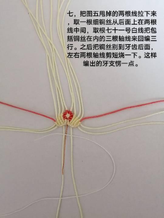 中国结论坛   图文教程区 142720womxs2oacmmsugzs