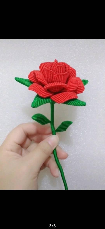 中国结论坛 谁会编这种玫瑰花啊? 斜卷结玫瑰花的编法,玫瑰花耳绳编法视频,玫瑰花是谁,玫瑰花一般送给谁 结艺互助区 182439v0ywxcifdxoi9xfc