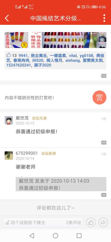 中国结论坛   中国绳结艺术分级达标审核 160820e123p871pkns7818