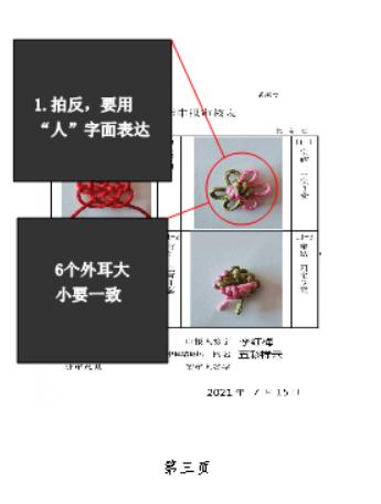 中国结论坛   中国绳结艺术分级达标审核 202640gvydprzlm1u16lft