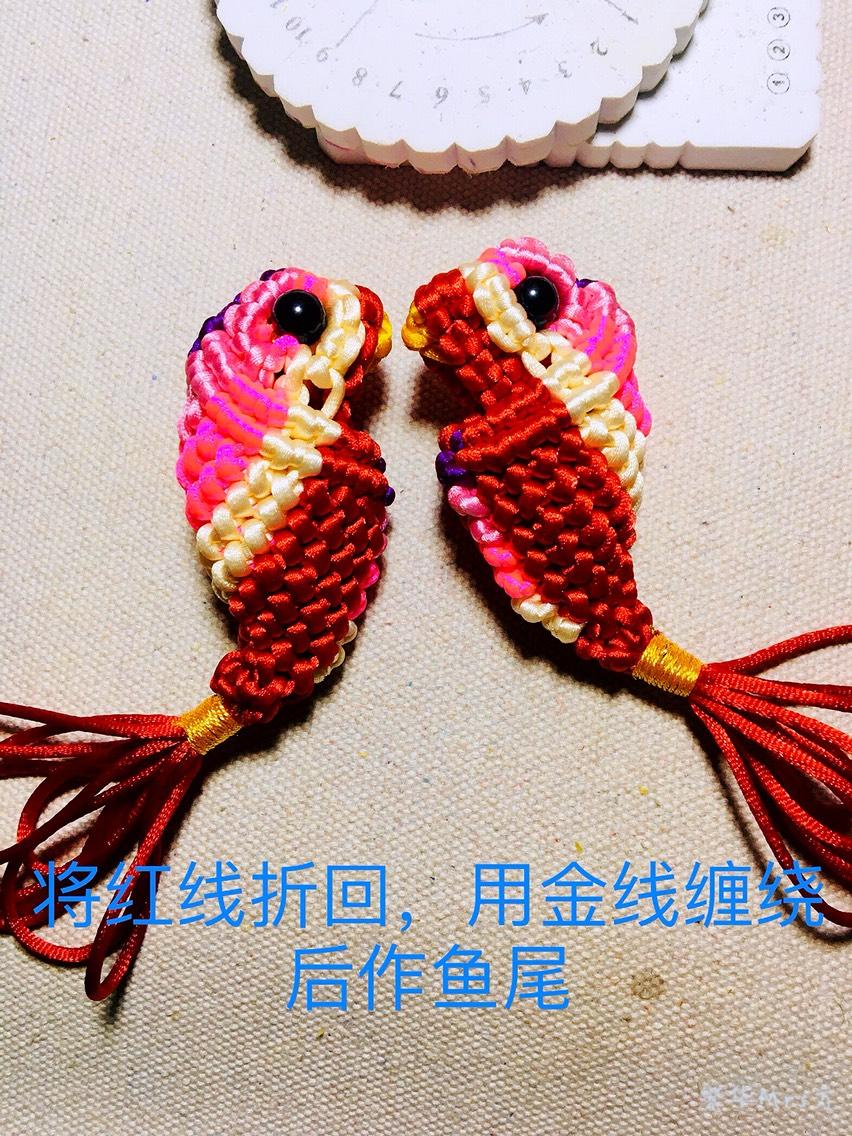 中国结论坛 记录小鱼制作过程 手工做鱼的方法幼儿园,小鱼的手工制作,小鱼手工折纸 图文教程区 215021xxj7xx7j6max73xt