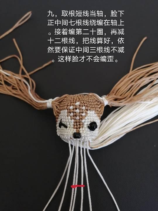中国结论坛   图文教程区 144657x1m83cu7m8vyx3xu