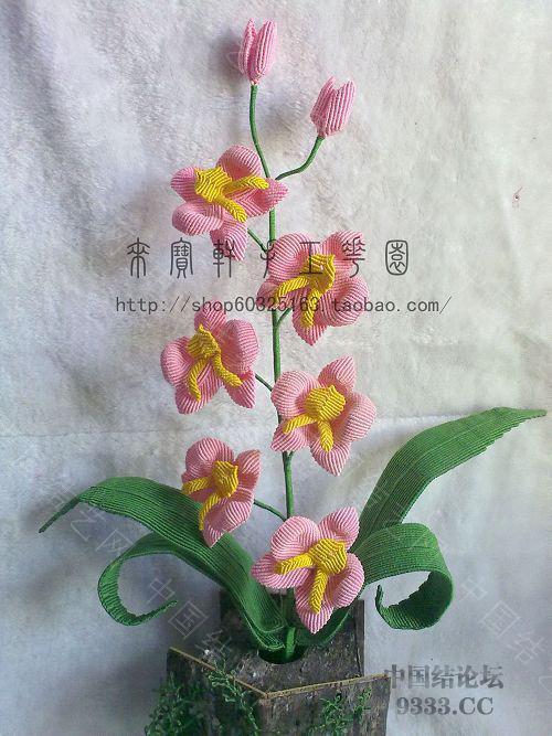 中国结论坛 我的花花世界--蝴蝶兰  立体绳结教程与交流区 10012301546691c75d4c6218f2