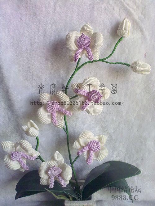 中国结论坛 我的花花世界--蝴蝶兰  立体绳结教程与交流区 1001230154dc7a4fdbda9350c2